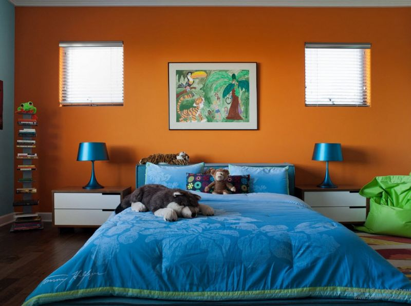 Accent Wall Color Inspiration and Project Ideas  Behr